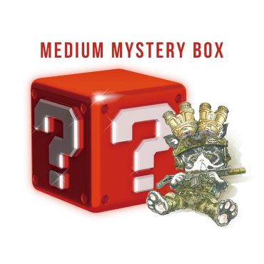 MEDIUM Lucky Box (USD$30) [Valued USD$45-65]